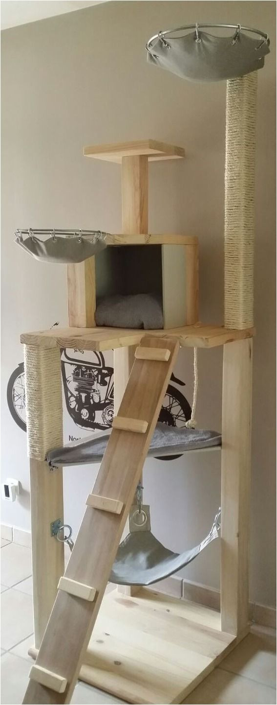 Outdoor Cat House Plans Lovely Outdoor Cat Tree House Plans