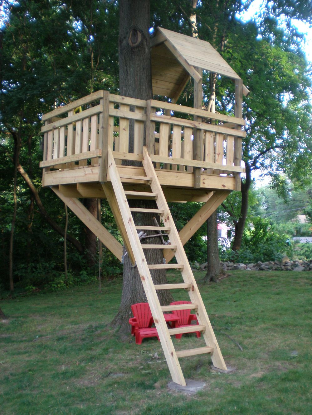 Tree house and how to start building
