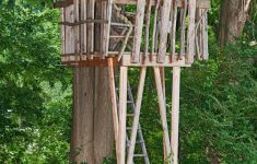 Tree House Building Plans New How To Build A Treehouse For Your Backyard Tree House Plans