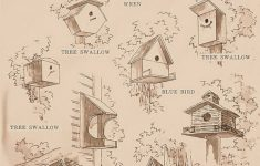 Wren Bird House Plans Best Of Birdhouse In The Garden That Makes The Park More Beautiful