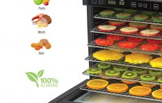 Food Dehydrator Bed Bath And Beyond Awesome Rosewill Food Dehydrator Machine 6 Tray Dehydrating Racks Electric Dehydrator 2 Speeds Settings And Dual Fans For Fast Drying Fruit Meat Jerky