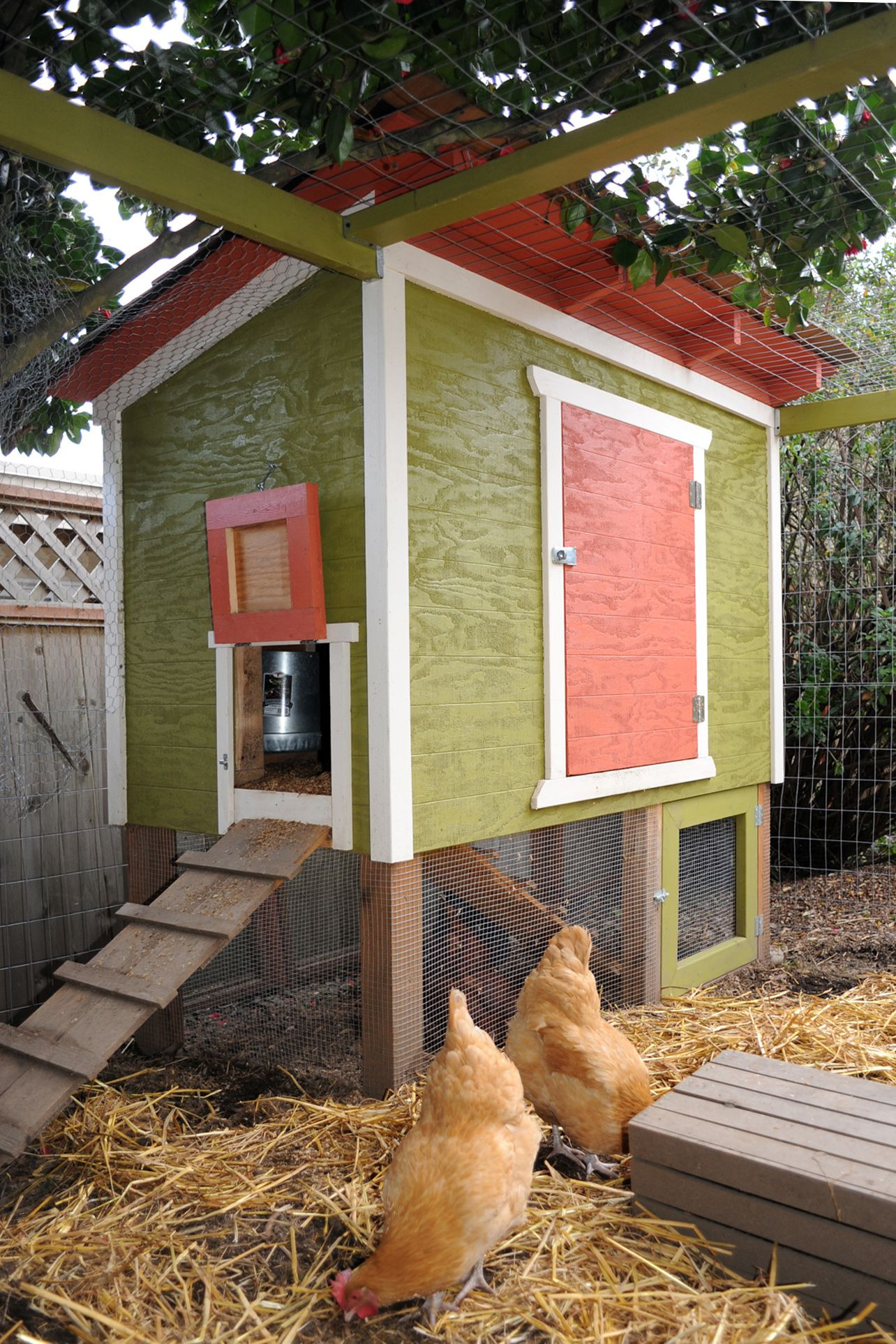 Free Chicken House Plans Fresh 48 Diy Chicken Coops How to Build A Chicken Coop