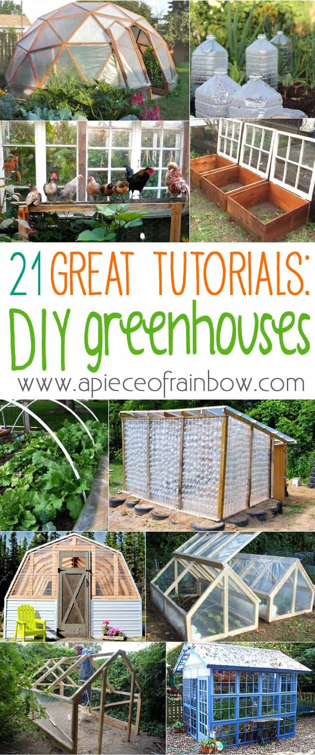 DIY Greenhouses apieceofrainbowblog