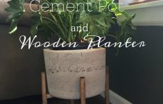 Menards Plant Stands Awesome Diy Cement Pot And Wooden Plant Stand