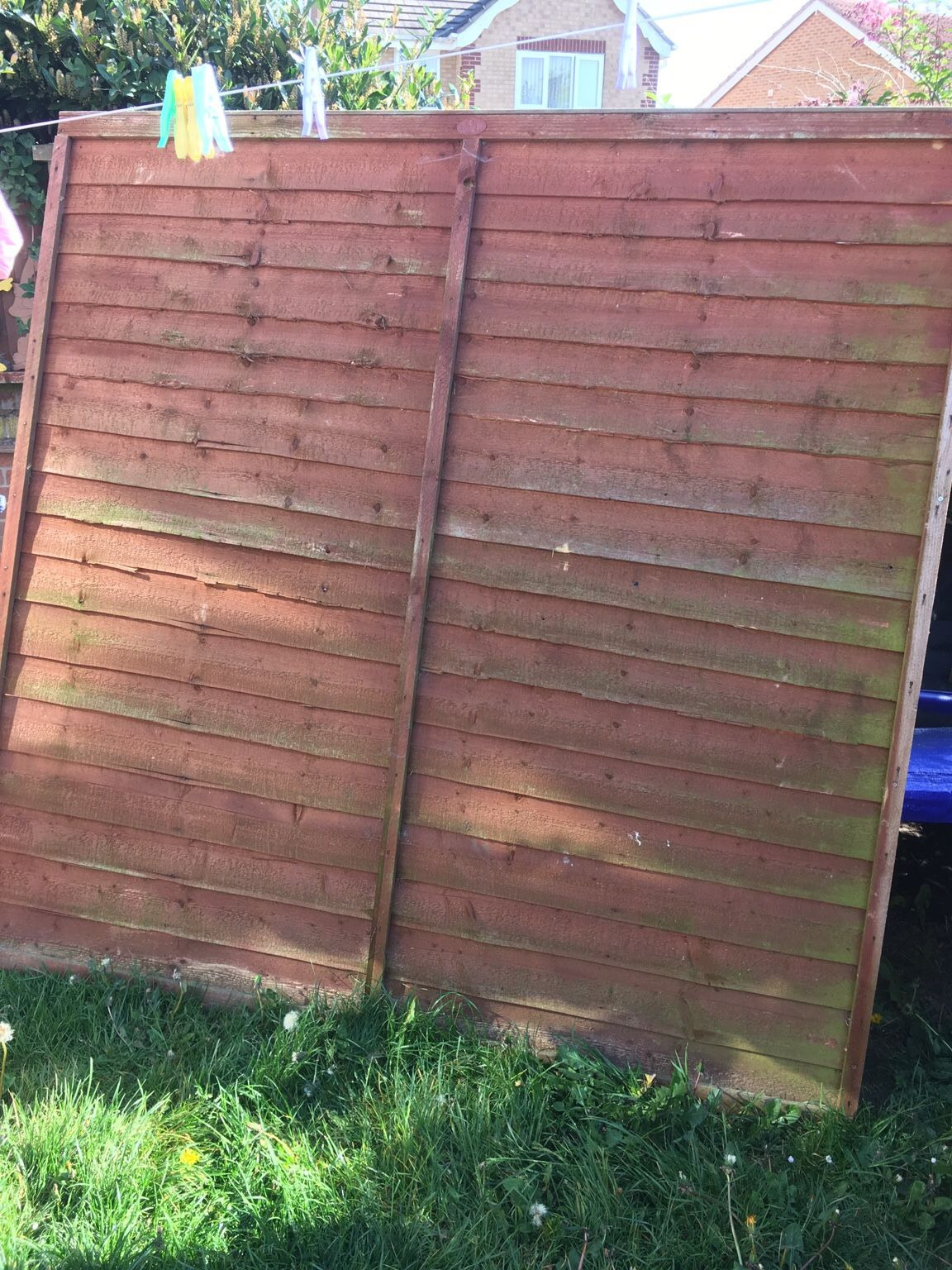 fencing 6ft panels and 2 posts