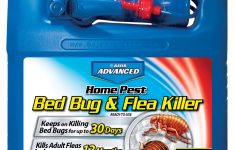 Ortho Bed Bug And Flea Killer Review Awesome Bayer Advanced Bed Bug & Flea Home Pest Killer 64 Oz Ready To Use