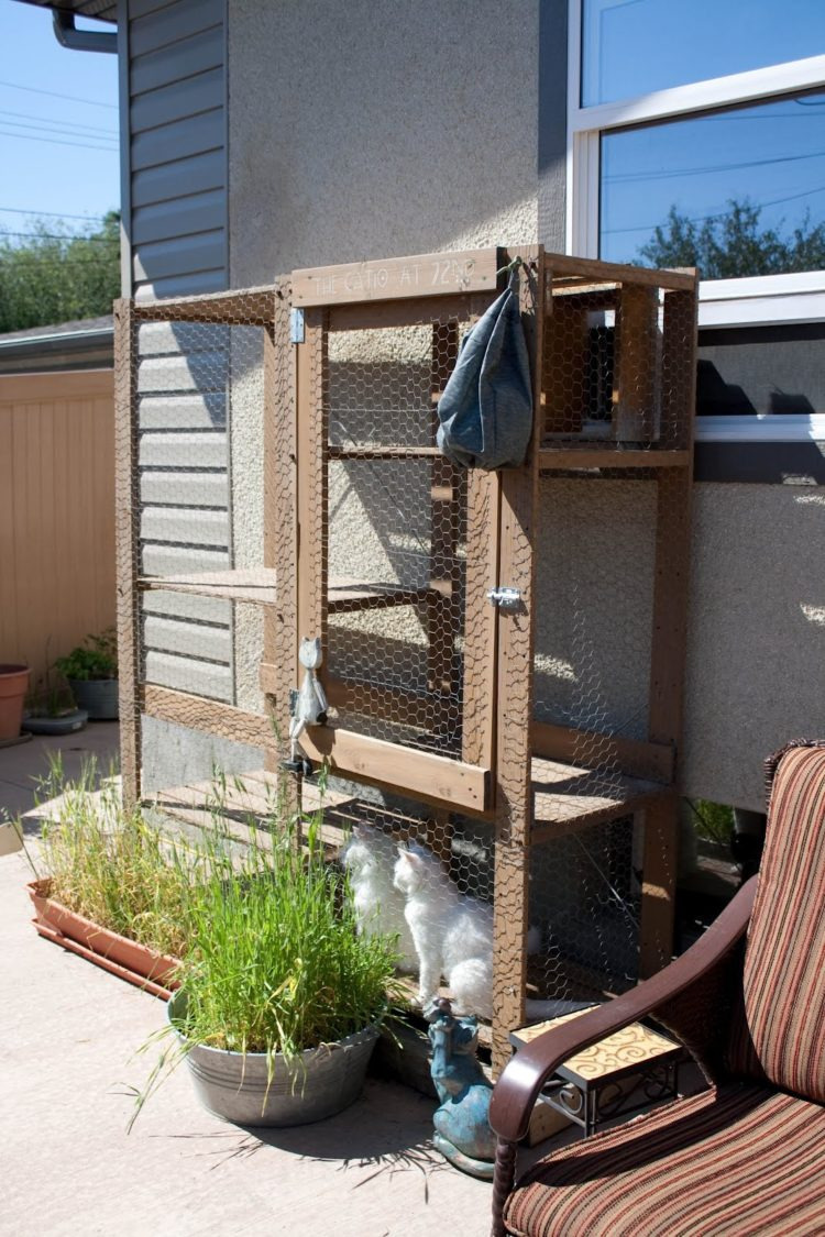 Outside Cat House Plans Awesome Outdoor Cat House Petsmart Inbound Marketing Summit