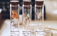 Tiny Glass Bottles With Corks Inspirational Glass Specimen Seed Vials