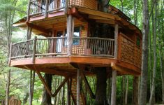 Treehouse Cabins New Braunfels Elegant Treehouse At Moose Meadow