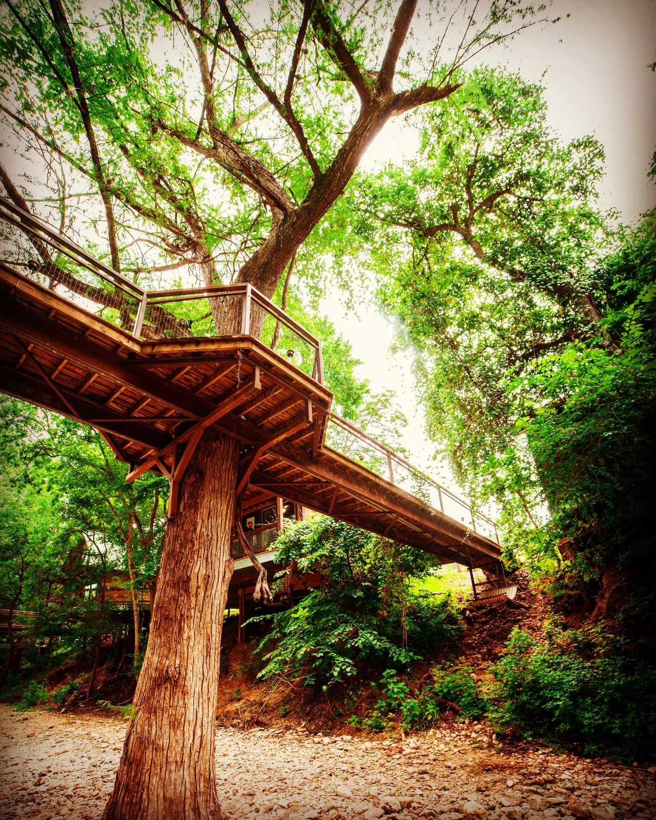 Treehouse Cabins New Braunfels Inspirational River Road Treehouses Guadalupe River Cabins
