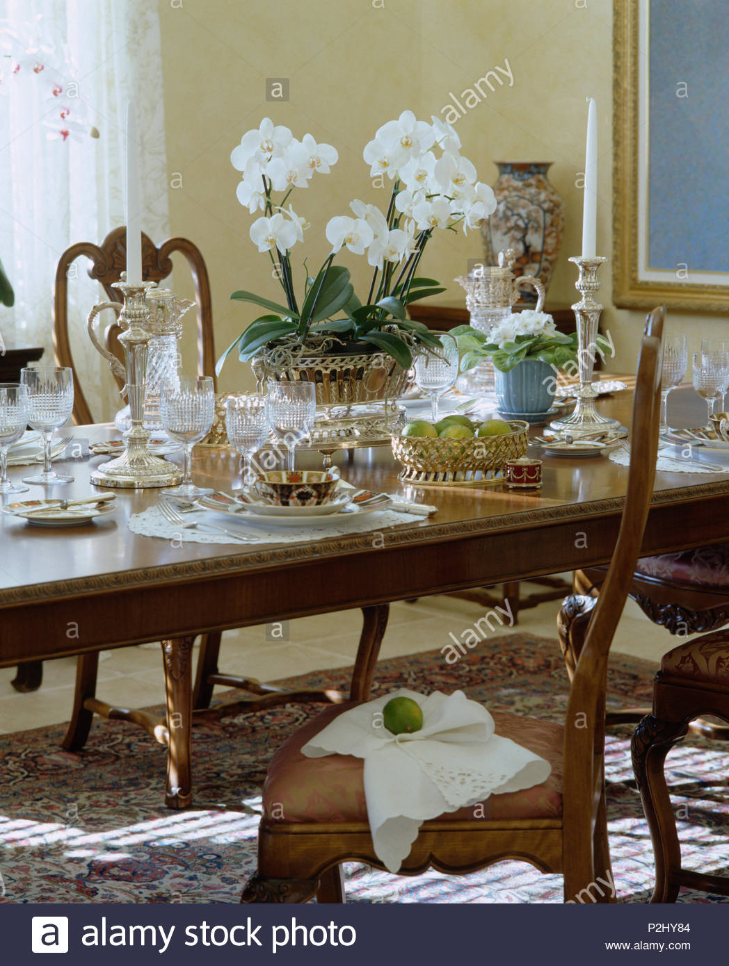 white orchid in pot on vintage table set for lunch with antique china in country dining room P2HY84