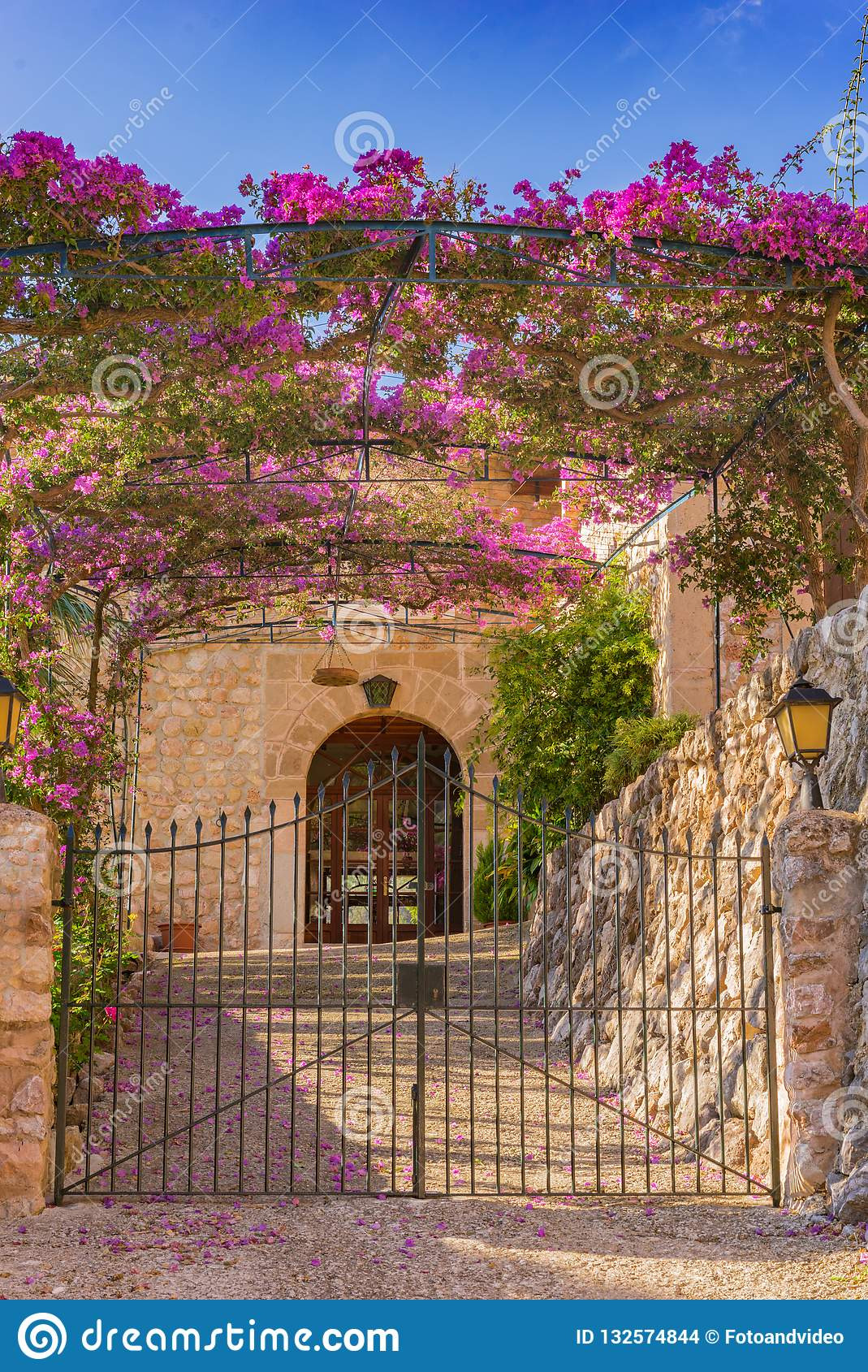 Beautiful Gates for Homes Luxury Entrance Metal Gate with Blooming Bougainvillea Plant