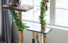 Cat Tree House Plans Lovely Diy Cat Tree Using A Real Tree