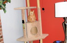 Cat Tree House Plans Lovely Diy Cat Tree With Step By Step Plan The Experimental Home