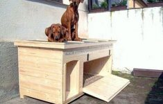 Dog House Plans Lowes New 3 Practical Tips For Building Your Own Dog House