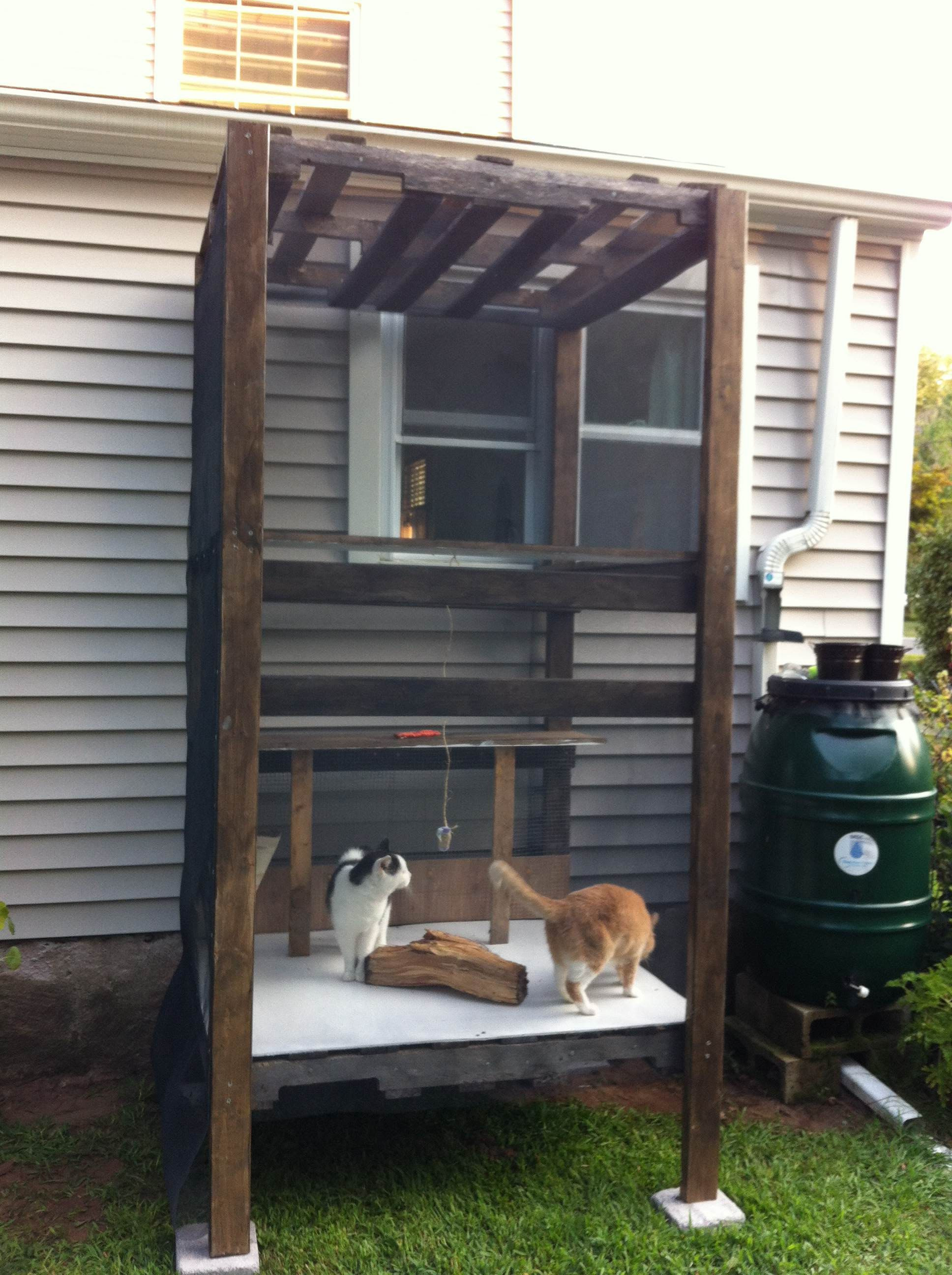 Indoor Cat House Plans Inspirational I Ve Finally Be E A Cat Lady