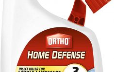 Ortho Home Defense Review Fleas Luxury Ortho Home Defense Insect Killer For Lawn & Landscape Ready To Spray 32 Oz