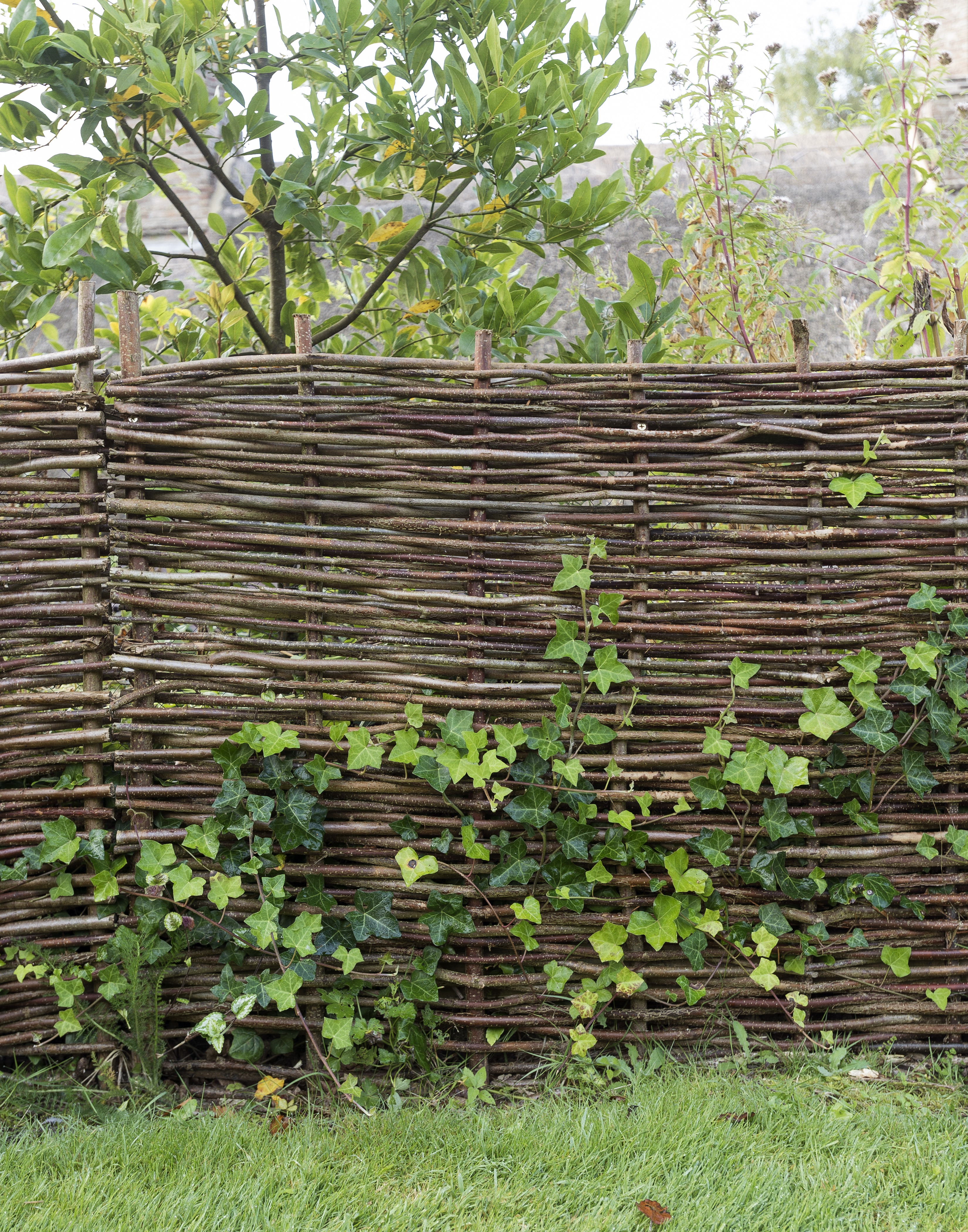hardscaping 101 woven fences design guide