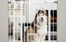 Temporary Dog Fence Kit Elegant Carlson Extra Tall Walk Through Pet Gate With Small Pet Door Includes 4 Inch Extension Kit 4 Pack Pressure Mount Kit And 4 Pack Wall Mount Kit