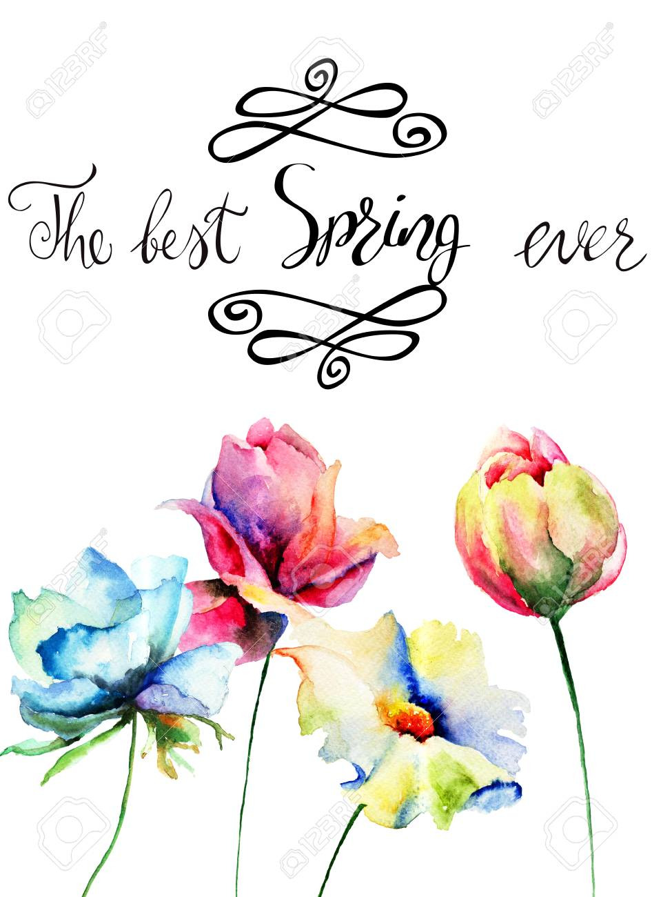 photo title the best spring ever with wild flowers watercolor illustration hand drawn lettering design