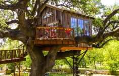 The Laurel Tree Restaurant Awesome Tour Laurel Tree Dining Treehouse — Nelson Treehouse