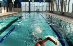 Westwood Swim Club Nj Beautiful Everything Under The Sun And Indoors Too News