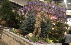 When Is The Home And Garden Show In Cincinnati Best Of Cincyhgs Cincyhgs