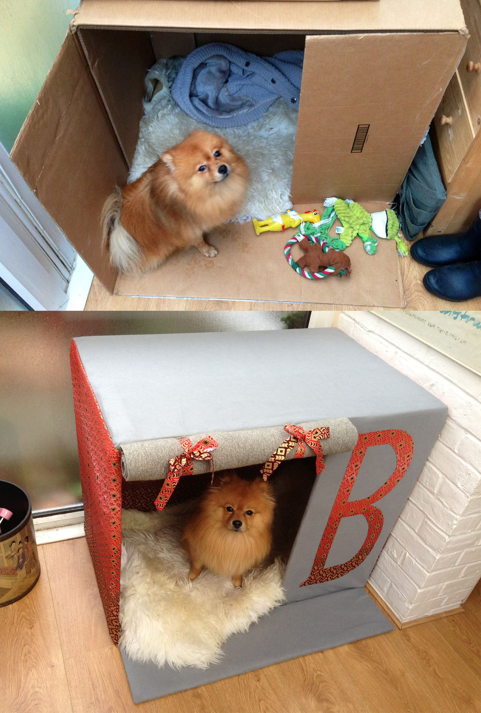 Dog House Plans for 3 Dogs Beautiful Made My Dog His Own House Out Of A Card Board Box Diy