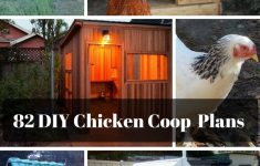How To Build A Chicken House Free Plans Elegant 82 [sensational] Chicken Coop Plans Mymydiy