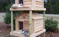 "Insulated Cat House Plans Elegant 20"" Townhouse Cat House"