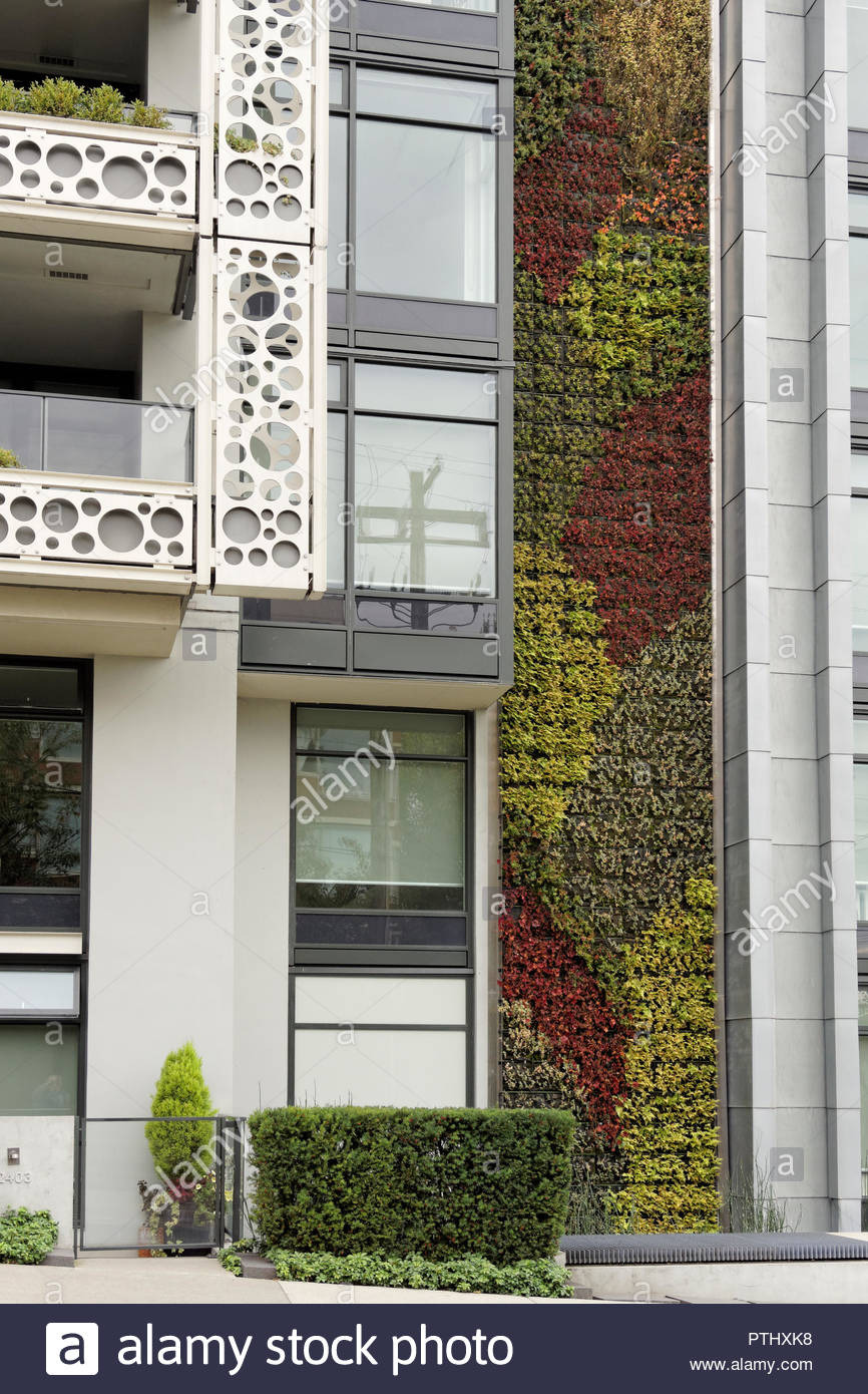 Modern Residential Building Design Beautiful Green Wall or Living Wall Vertical Garden On the Side Of
