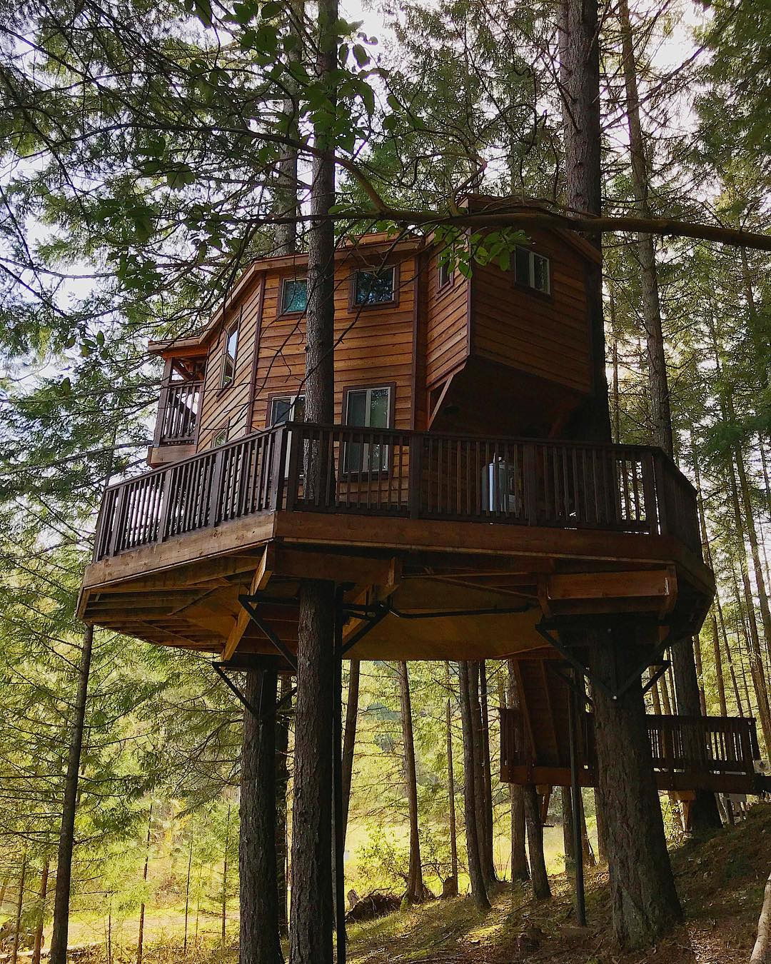 Treetop Cabins Texas Fresh Treehouse Camping 12 Places to Find Camping In the Branches