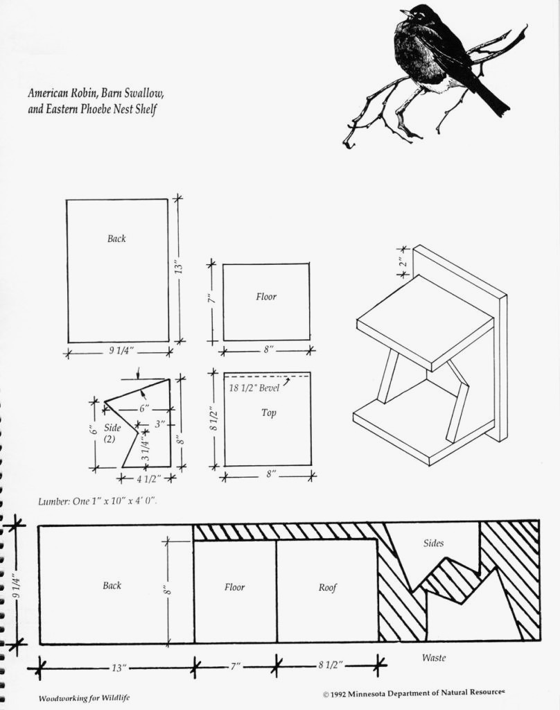 robin bird houses plans free best of bird house plans for robins new how to make a robin nest box new home plans design of robin bird houses plans free