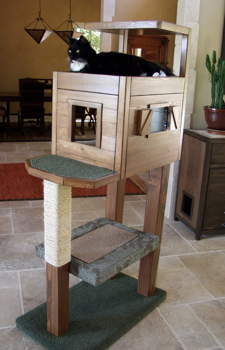 Wooden Cat House Plans Unique 52 Diy Outdoor Cat House Ideas for Winters and Summer