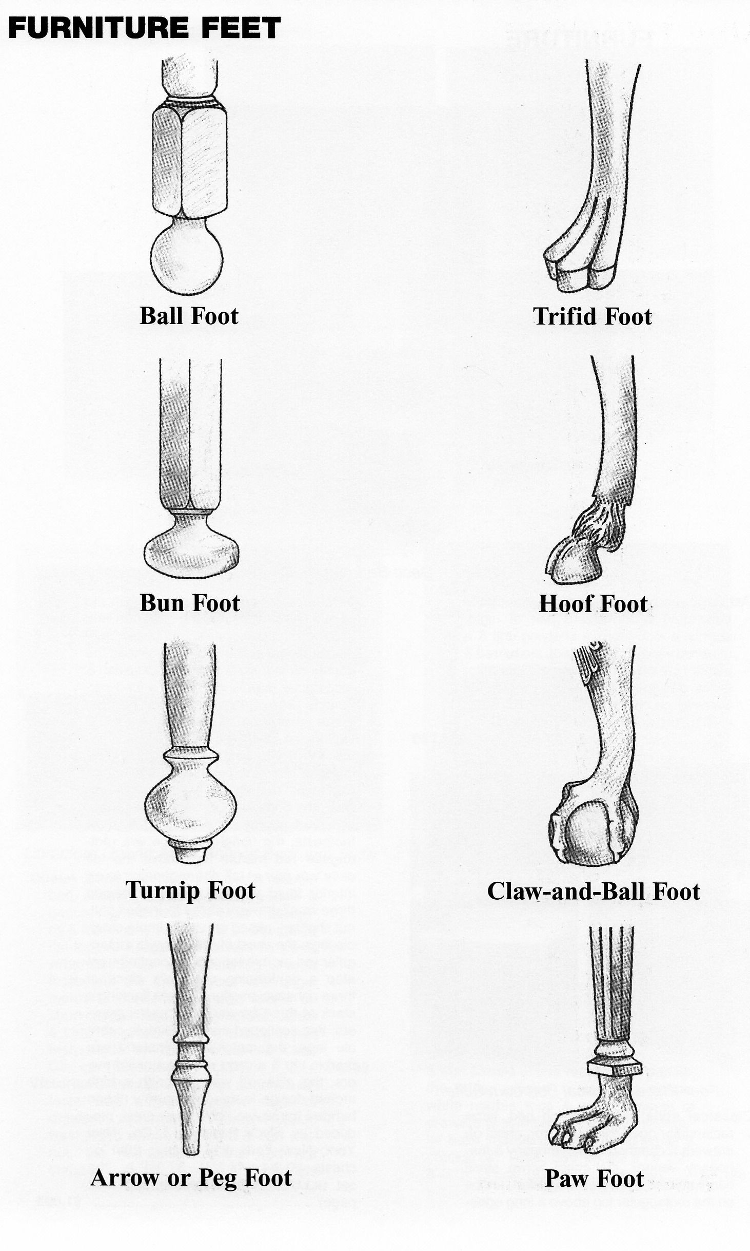 Antique Furniture Styles Guide Beautiful Diagrams Of Furniture Feet