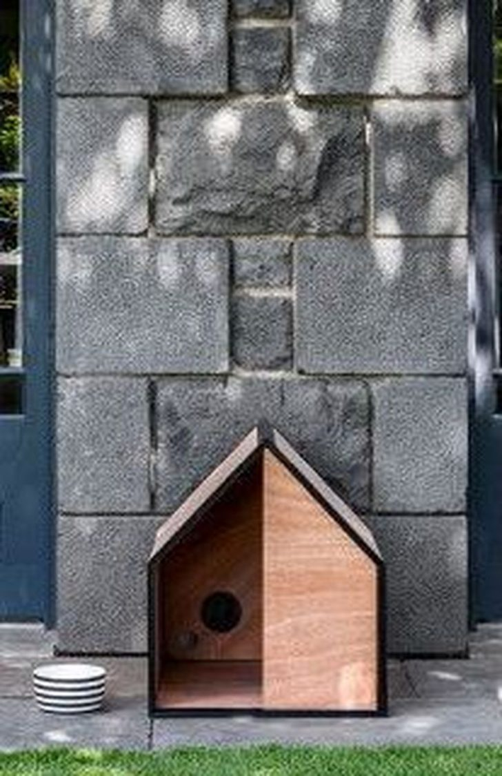 Best Dog House Plans 2020