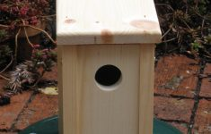 Building Bird Houses Plans Inspirational Diy Bird House Pole Plans Download Wooden Box Plan Pdf