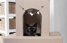Cat House Plans Free Luxury 9 Of The Coolest Cardboard Cat Houses