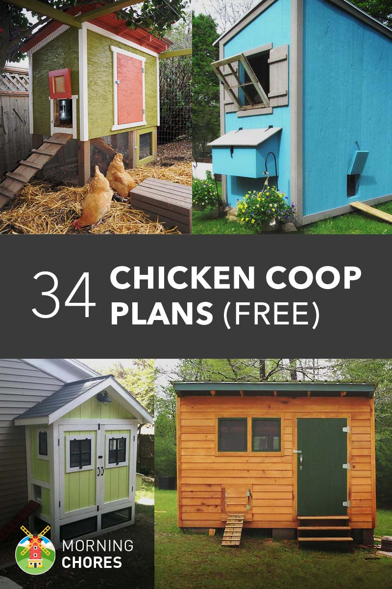 Chicken House Design Plans New 61 Diy Chicken Coop Plans that are Easy to Build Free