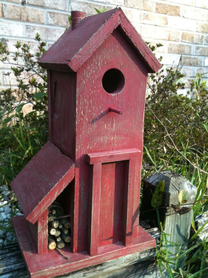 Cool Bird House Plans 2020