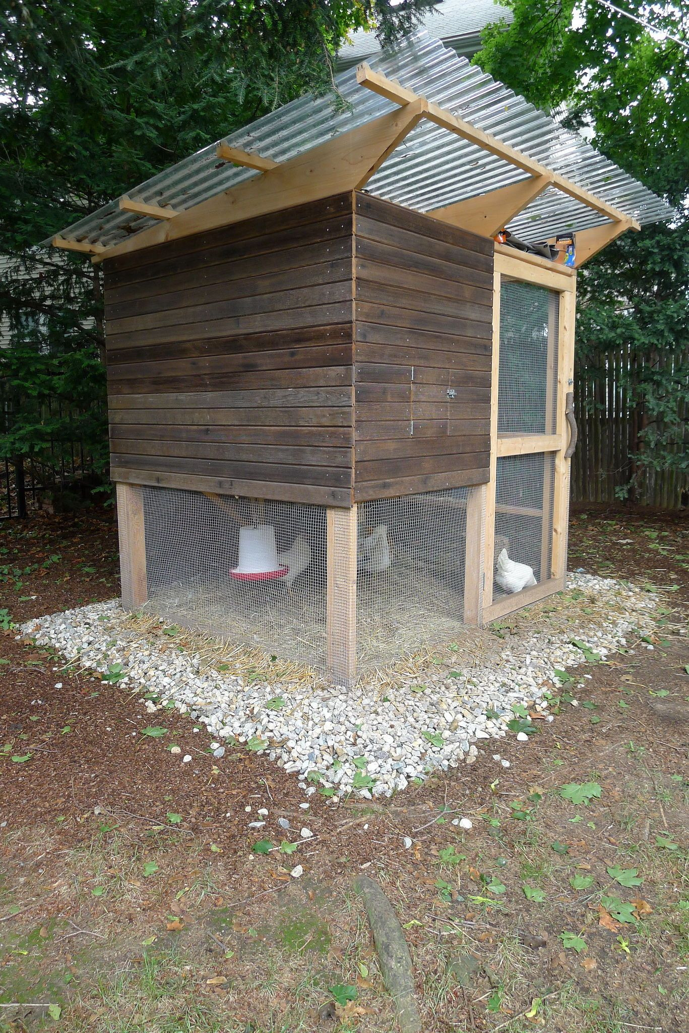 Easy Chicken House Plans Lovely 5 Simple Steps On How to Build A Backyard Chicken Coop
