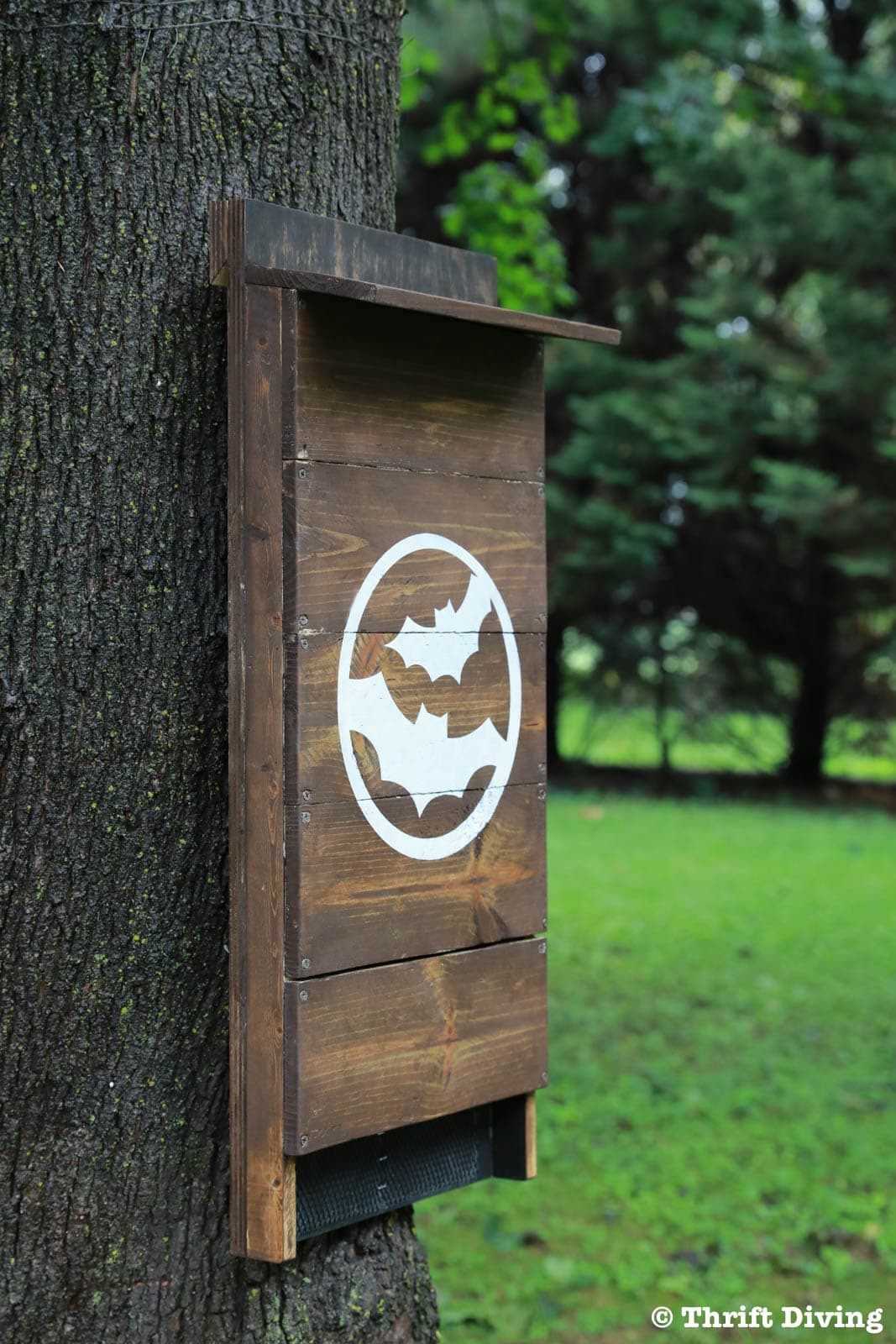 How to Make A Bat House Free Plans Unique How to Build Diy Bat House for Your Backyard to Get Rid Of