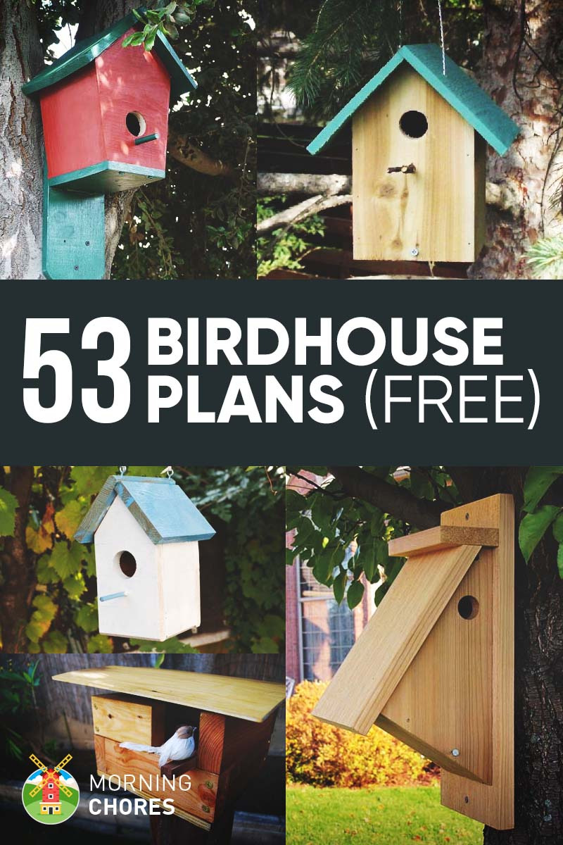 53 Free DIY Bird House Plans to Attract Birds to Your Garden