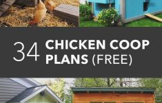 Plans For A Chicken House Inspirational 34 Free Chicken Coop Plans & Ideas That You Can Build On