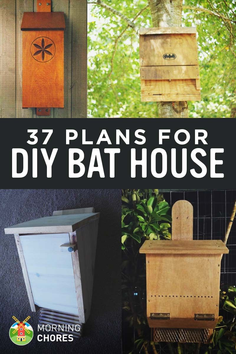 Plans for Building A Bat House Elegant 37 Free Diy Bat House Plans that Will attract the Natural