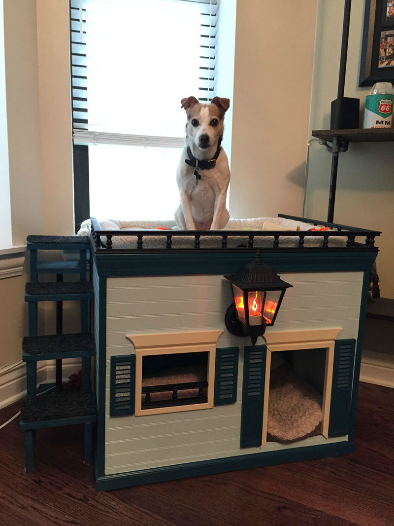 DIY Dog Houses 13