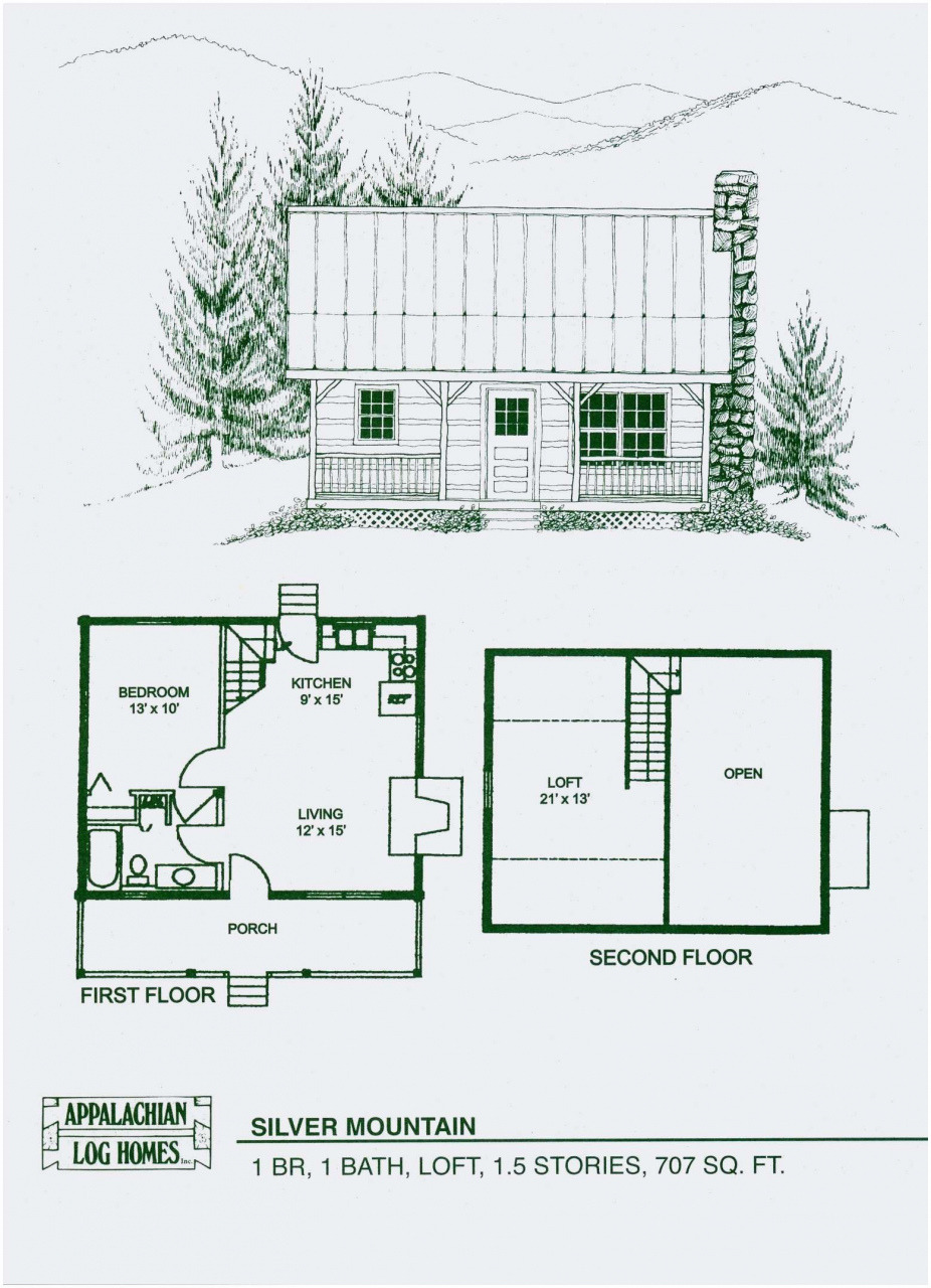 Small House Plans with Pictures Awesome Shed Roof House Plans Inspirational Small House Plans