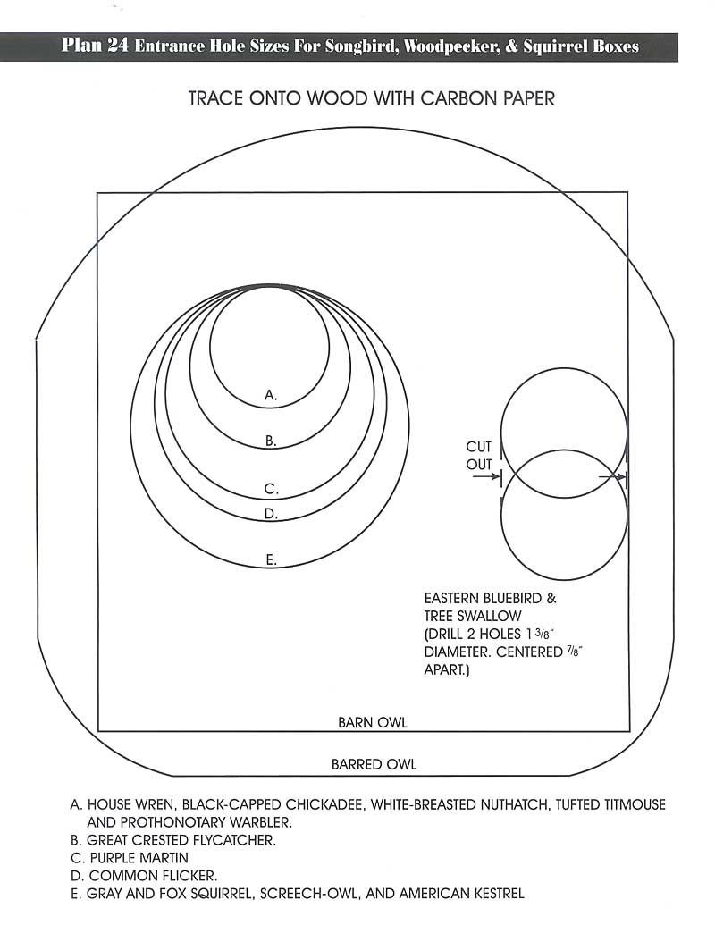 Swallow Bird House Plans Beautiful Pin by Zed Snark On Birdhouses