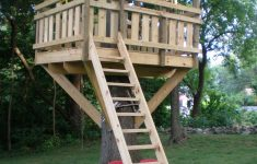 Tree House Plans Without A Tree Fresh Tree Fort Ladder Gate Roof [finale]
