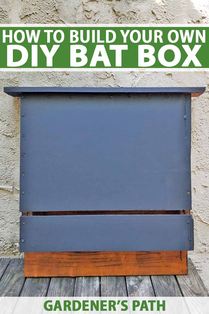 Bat House Plans for Kids Elegant How to Build A Bat Box with Diy Instructions